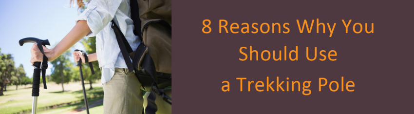 sole_labz_musings_reasons_for_using_trekking_pole